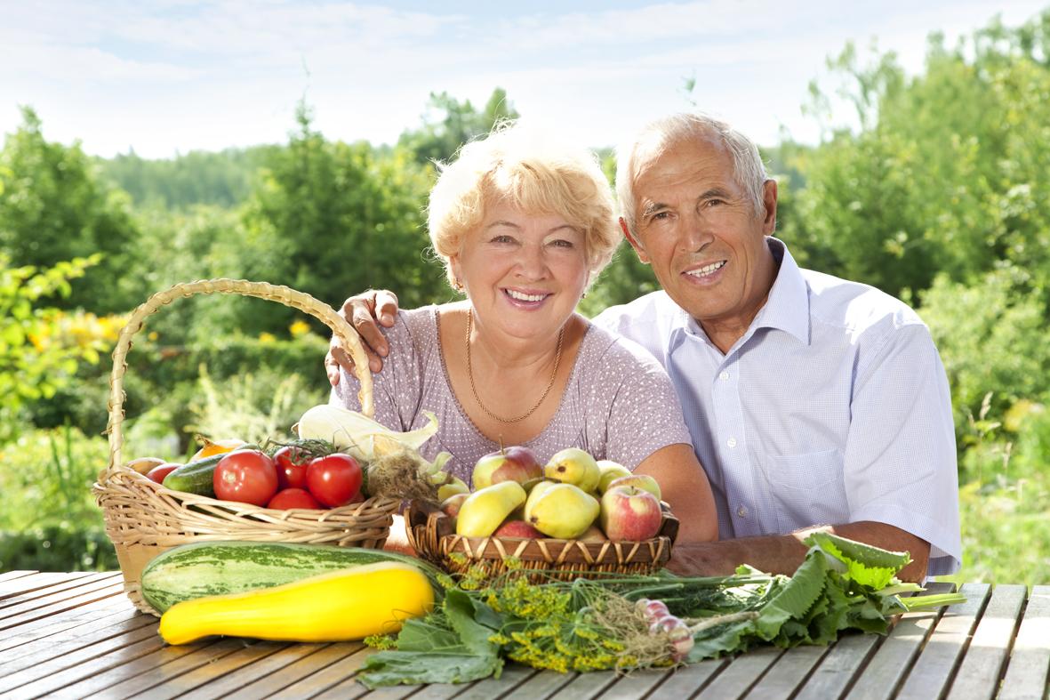 necesidades dietéticas de vejez