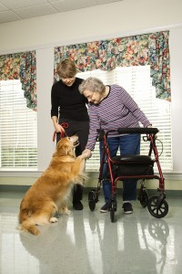 Consejos para las familias para cuidar a personas mayores. Qué tipos de cuidados necesitan y cómo la familia puede atenderles a nivel emocional.